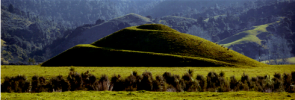 Tainui Mountain